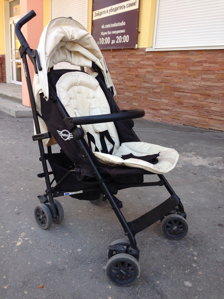 фото трости Easywalker mini buggy