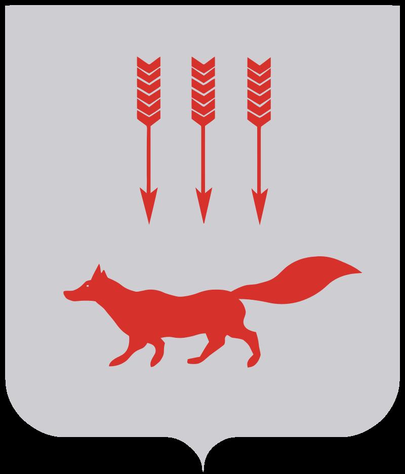 Easywalker в Саранске